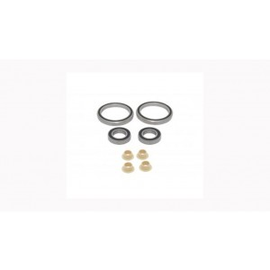 GT 2010 FURY BEARING KIT